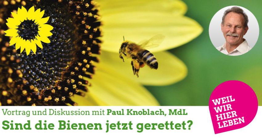 MdL Paul Knoblach: Sind die Bienen jetzt gerettet?